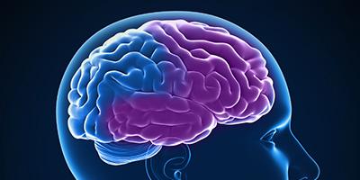 Frontotemporal Dementia (FTD) | Symptoms & Treatments | alz.org